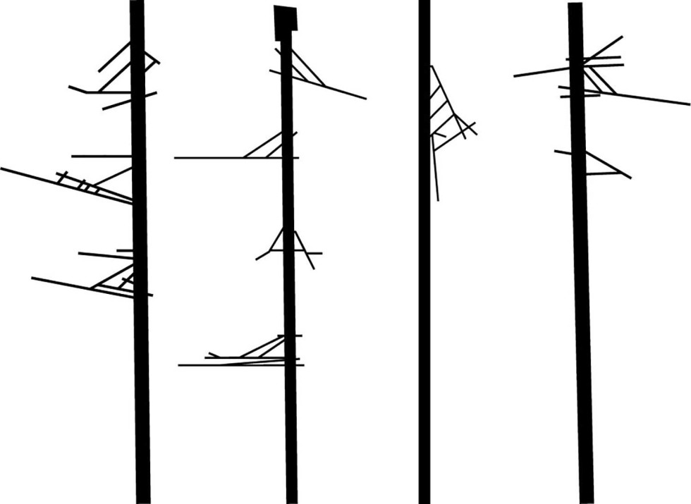 birds posts